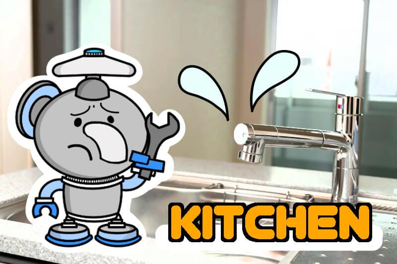 キッチンや洗面所まわりの主なサービス内容